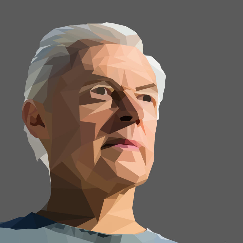 autoportrait polygonal -Michel Mg